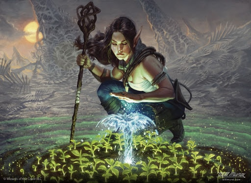 5e Druid conjuring a wellspring in the desert